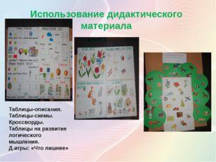 Использование дидактического материала Таблицы-описания. Таблицы-схемы. Кросс