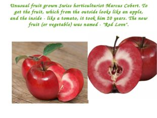 Unusual fruit grown Swiss horticulturist Marcus Cobert. To get the fruit, whi