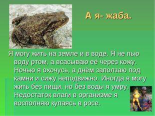 А я- жаба. Я могу жить на земле и в воде. Я не пью воду ртом, а всасываю её ч