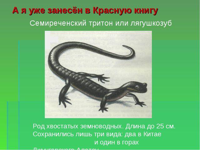 А я уже занесён в Красную книгу Род хвостатых земноводных. Длина до 25 см. Со...