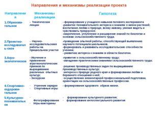 Направления и механизмы реализации проекта Направления Механизмы реализации Г