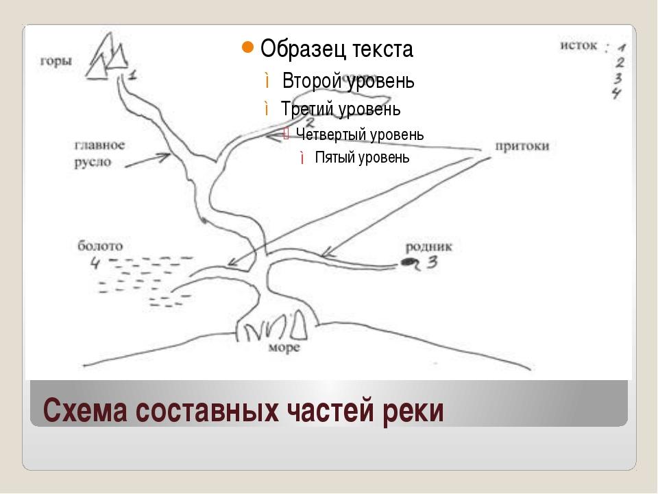 Схема составных частей реки