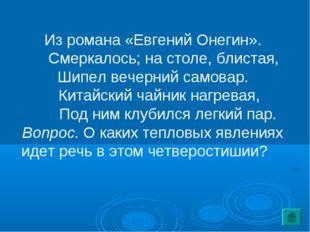 Из романа «Евгений Онегин». Смеркалось; на столе, блистая, Шипел вечерний сам