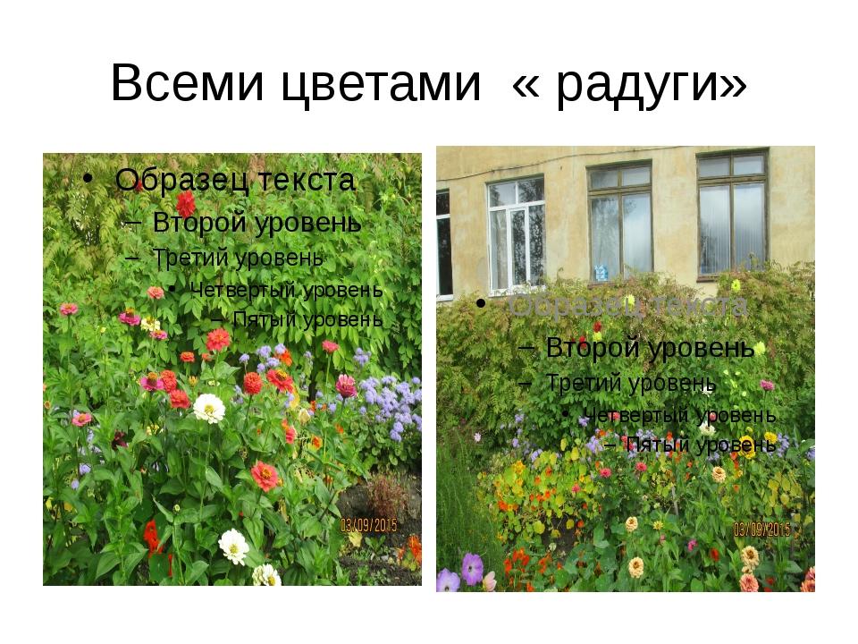 Всеми цветами « радуги»