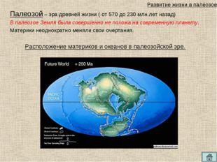 Палеозой – эра древней жизни ( от 570 до 230 млн.лет назад) В палеозое Земля