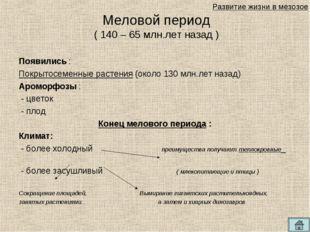 Появились : Покрытосеменные растения (около 130 млн.лет назад) Ароморфозы : -