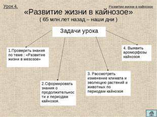 «Развитие жизни в кайнозое» ( 65 млн.лет назад – наши дни ) Урок 4. Развитие