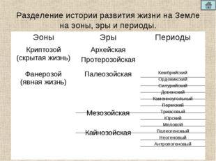 Разделение истории развития жизни на Земле на эоны, эры и периоды. ЭоныЭрыП