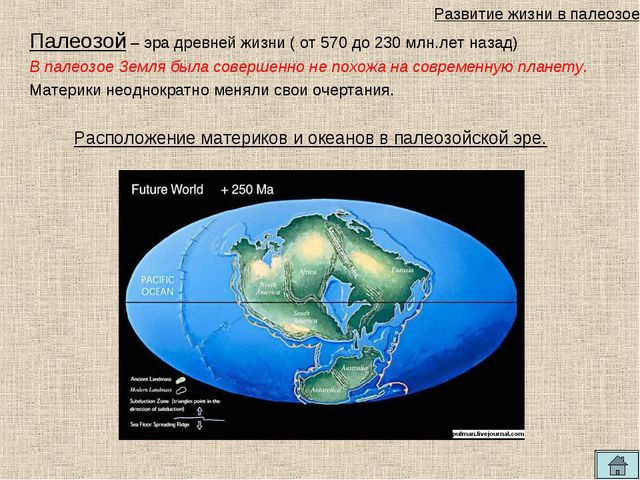 Палеозой – эра древней жизни ( от 570 до 230 млн.лет назад) В палеозое Земля...