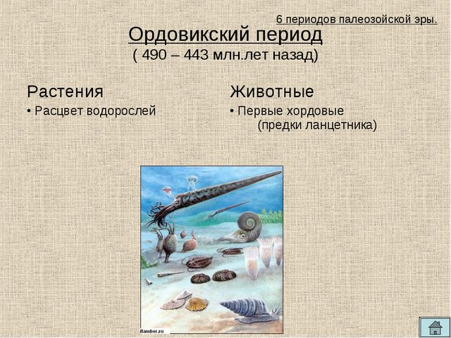 Ордовикский период ( 490 – 443 млн.лет назад) 6 периодов палеозойской эры. Ра...