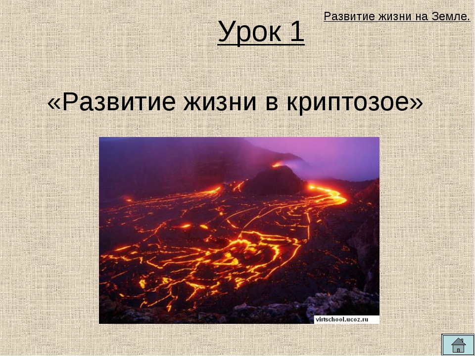 Урок 1 «Развитие жизни в криптозое» Развитие жизни на Земле.