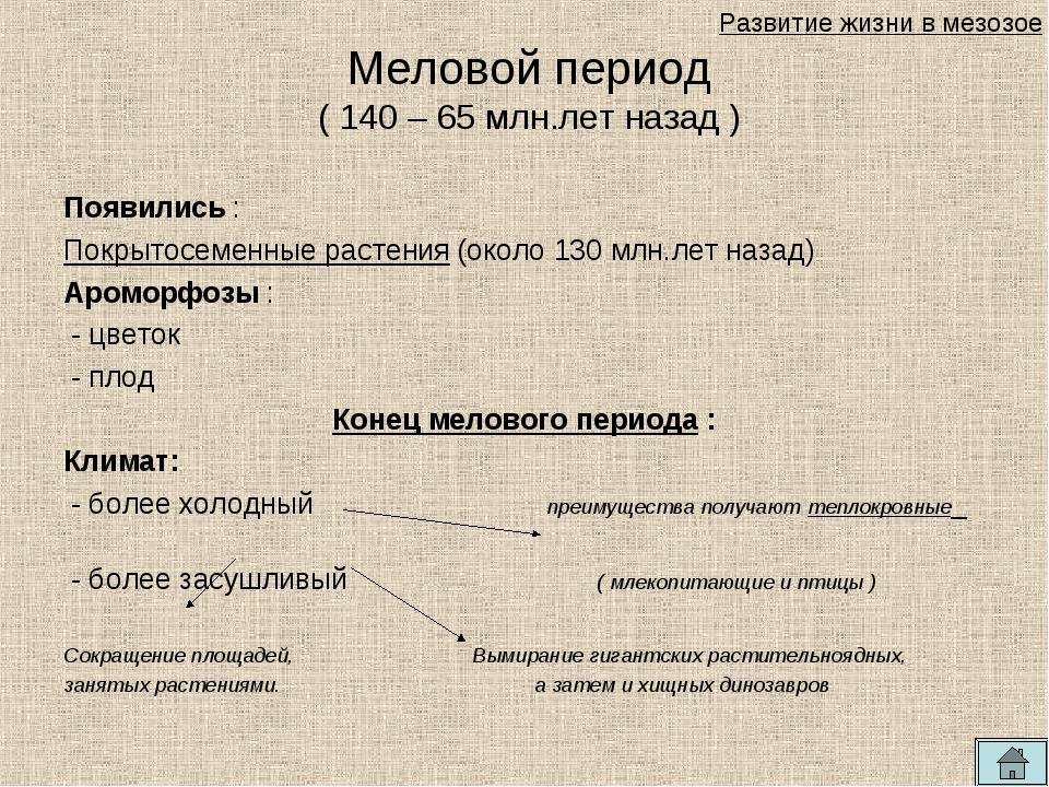 Появились : Покрытосеменные растения (около 130 млн.лет назад) Ароморфозы : -...