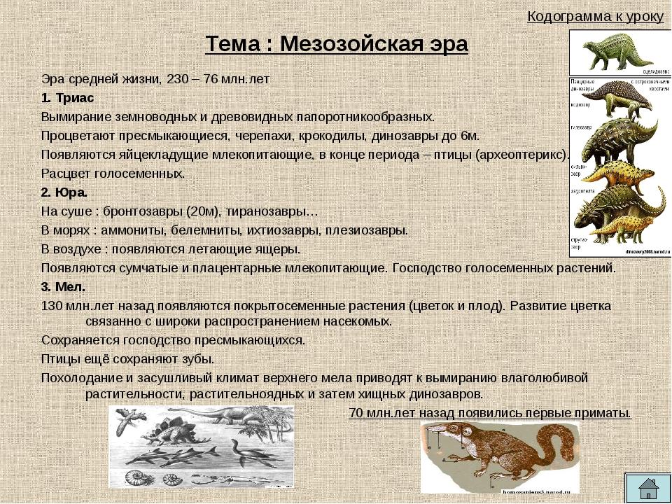 Тема : Мезозойская эра Эра средней жизни, 230 – 76 млн.лет 1. Триас Вымирание...