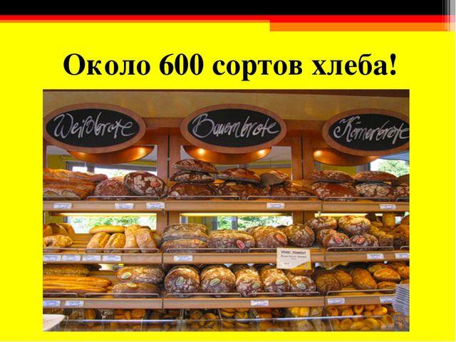 Около 600 сортов хлеба!
