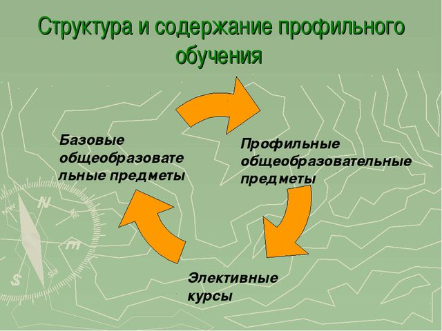 Структура и содержание профильного обучения Базовые общеобразовательные предм...