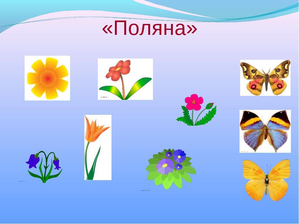 «Поляна»