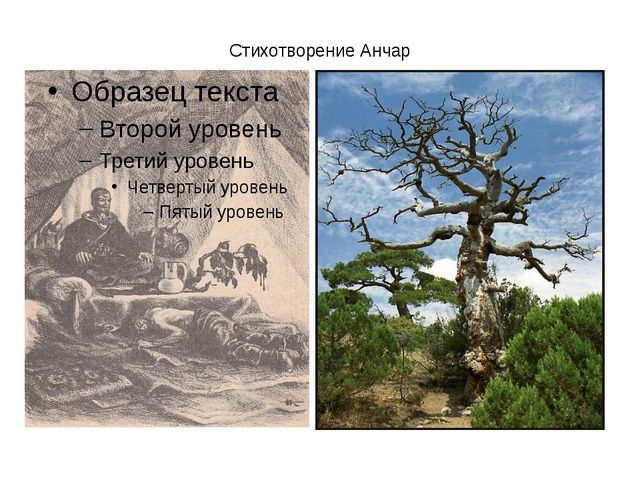 Стихотворение Анчар