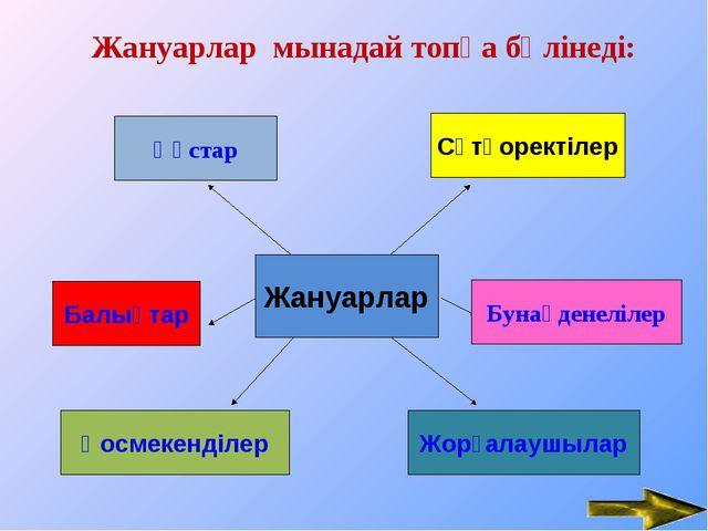 Жануарлар мынадай топқа бөлінеді: Erzhan - null