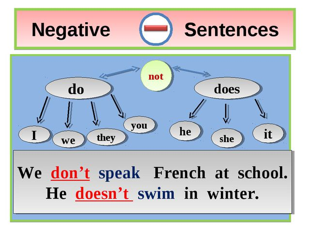 Negative Sentences do does I we you they not he it she We don't speak French...