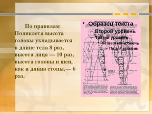 По правилам Поликлета высота головы укладывается в длине тела 8 раз, высота