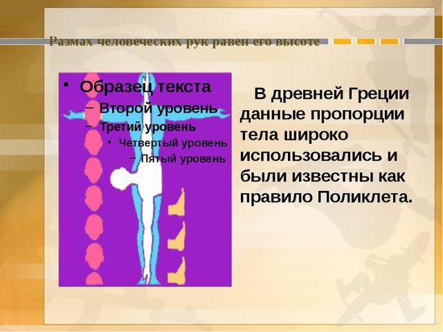 Размах человеческих рук равен его высоте В древней Греции данные пропорции те...