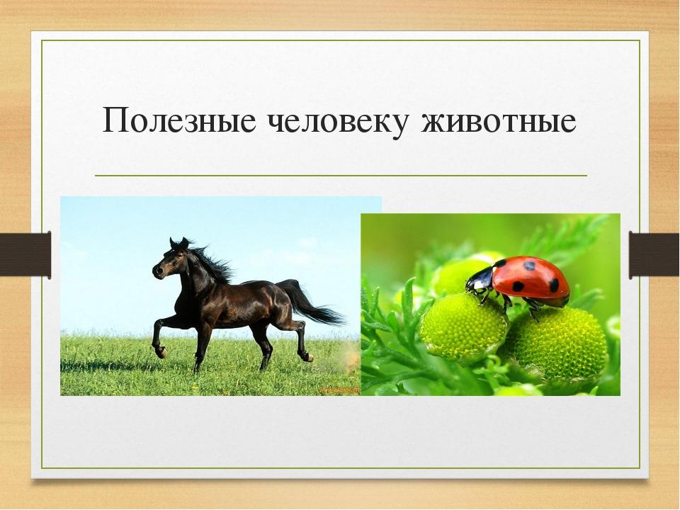 Полезные человеку животные