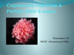 Спряжение глаголов в Perfekt Aktiv 6 класс Шашорина Е.В. МКОУ «Ильменская СОШ»
