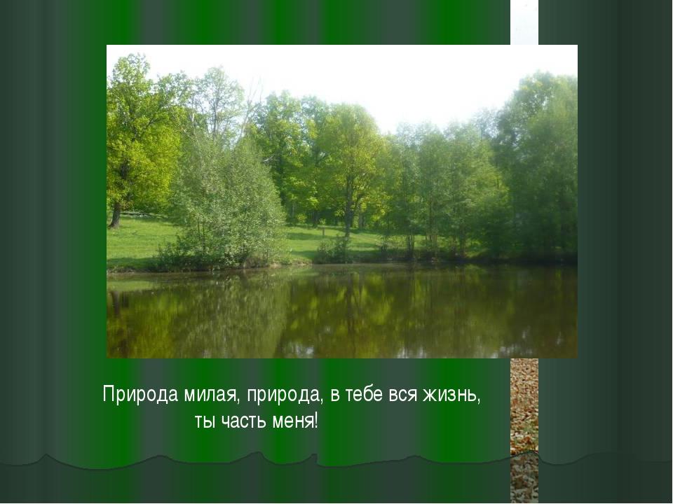 Природа милая, природа, в тебе вся жизнь, ты часть меня!