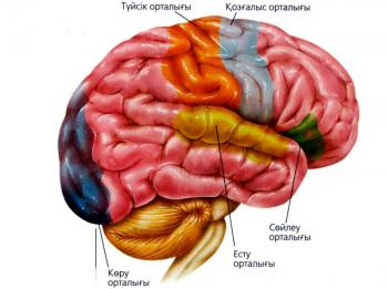 http://mongolianislam.mn/kz/wp-content/uploads/2012/03/mthiyf-21.jpg