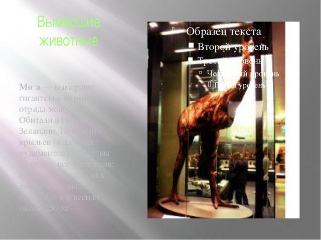 Вымершие животные Мо́а — вымершие гигантские птицы отряда моаобразных. Обитал...