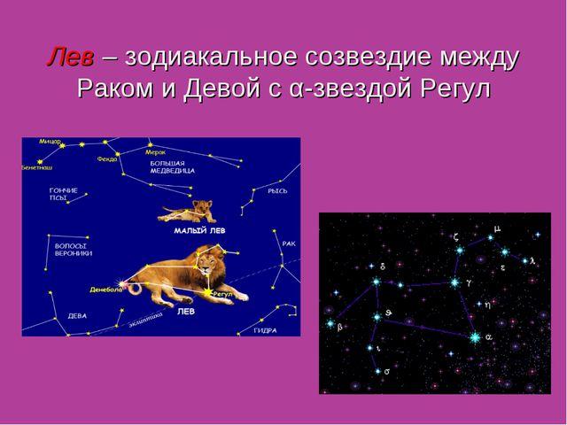Лев – зодиакальное созвездие между Раком и Девой с α-звездой Регул