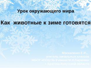 Урок окружающего мира Как животные к зиме готовятся Маскаленко Е.И., учитель