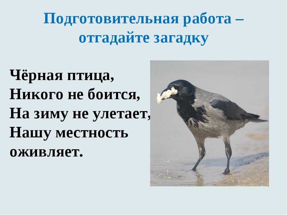 Подготовительная работа – отгадайте загадку Чёрная птица, Никого не боится, Н...