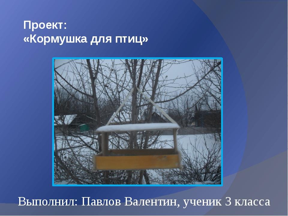 Проект: «Кормушка для птиц» Выполнил: Павлов Валентин, ученик 3 класса