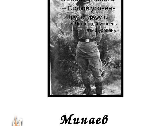 Минаев Николай Григорьевич