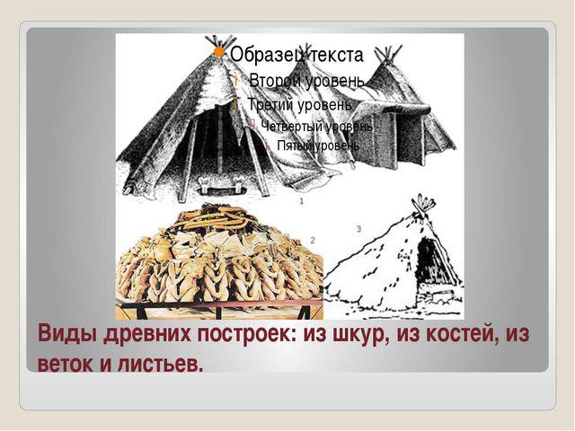 Виды древних построек: из шкур, из костей, из веток и листьев.