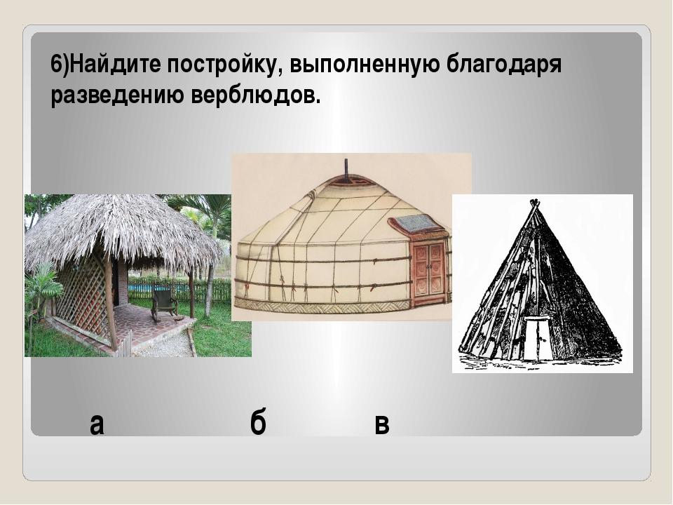 а б в 6)Найдите постройку, выполненную благодаря разведению верблюдов.