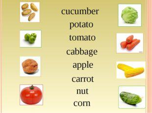 corn potato tomato cabbage apple carrot nut cucumber