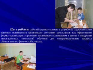 Цель работы рабочей группы состояла в разработке содержательных аспектов мон
