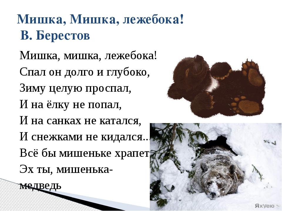 Мишка, мишка, лежебока! Спал он долго и глубоко, Зиму целую проспал, И на ёлк...