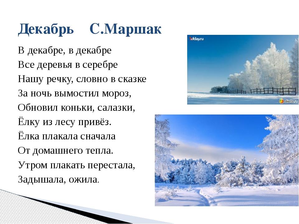 В декабре, в декабре Все деревья в серебре Нашу речку, словно в сказке За ноч...