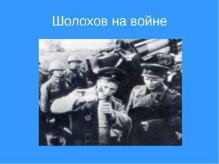 Шолохов на войне
