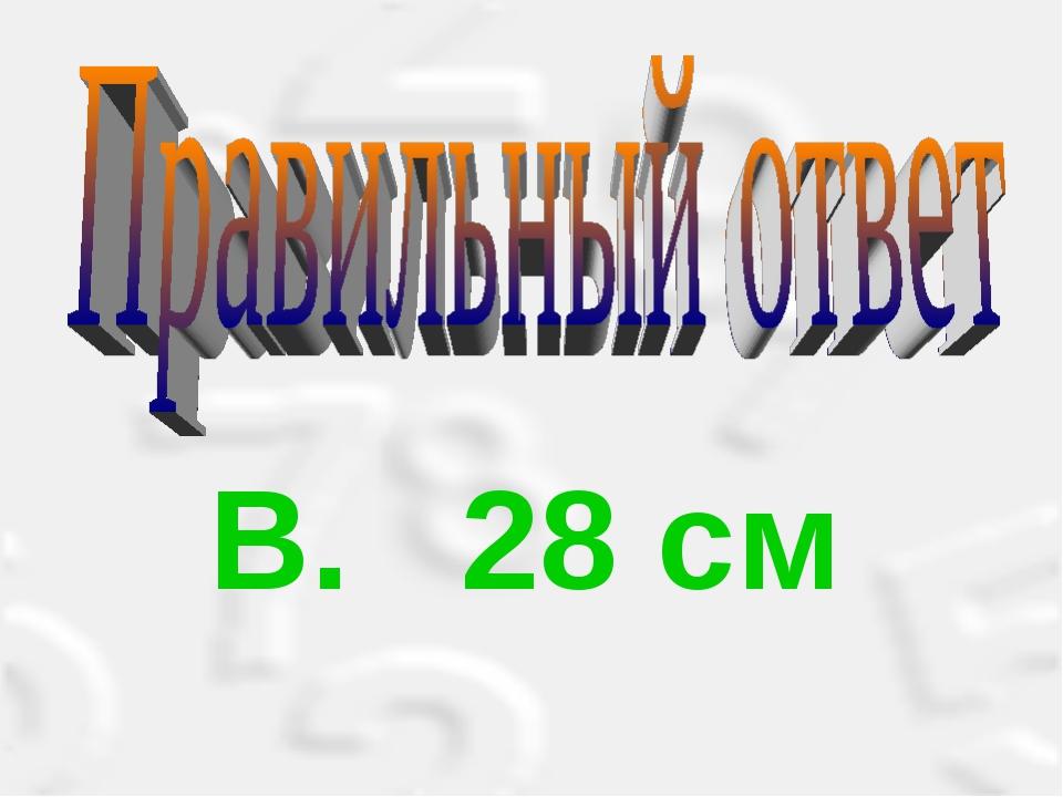 B. 28 см