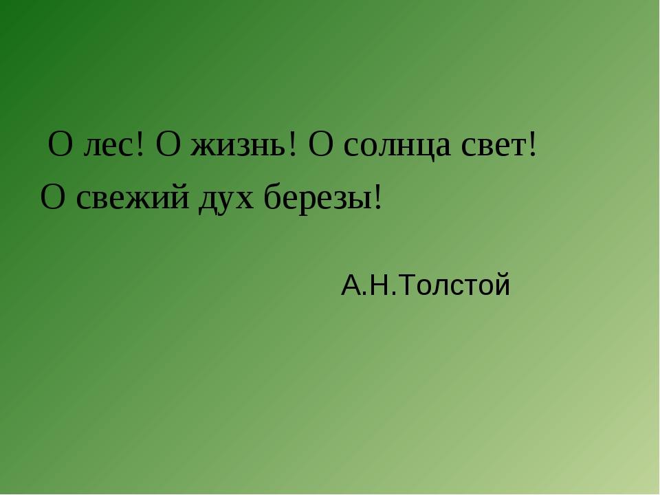 О лес! О жизнь! О солнца свет! О свежий дух березы! А.Н.Толстой
