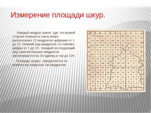 Измерение площади шкур. Каждый квадрат равен 1дм. На правой стороне планшета