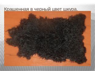 Крашенная в черный цвет шкура.