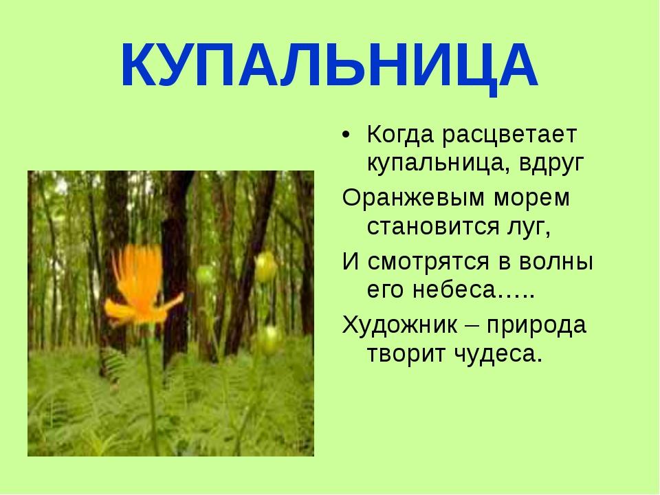 КУПАЛЬНИЦА Когда расцветает купальница, вдруг Оранжевым морем становится луг,...