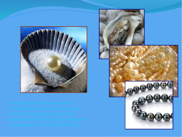 Если внутрь ракушки попадет маленькая песчинка, то некоторые моллюски выращив...