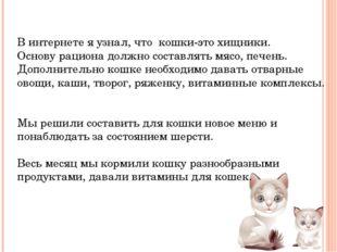 В интернете я узнал, что кошки-это хищники. Основу рациона должно составлять