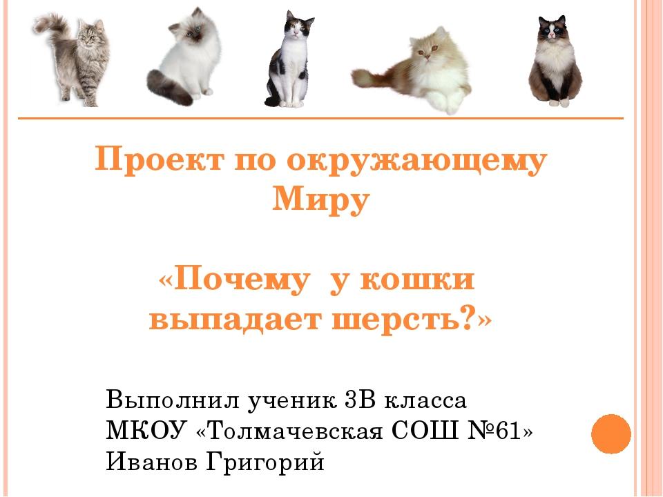 Проект по окружающему Миру «Почему у кошки выпадает шерсть?» Выполнил ученик...